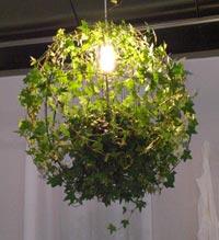 лампа из комнатных цветов для дачи