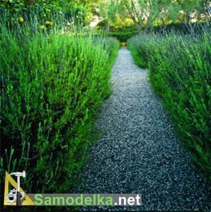 Садовые дорожки своими руками фото 6