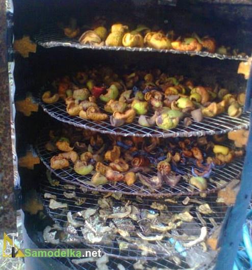 полки для фруктов в сушилке