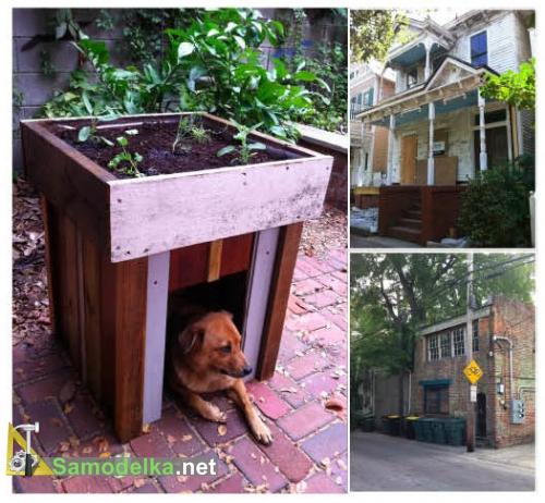 самодельная собачья будка с клумбой на крыше