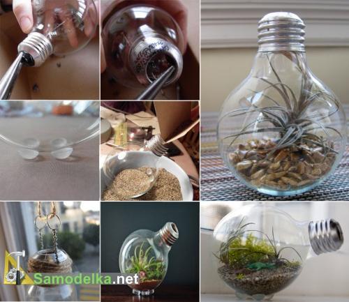 Самодельный террариум в лампочке