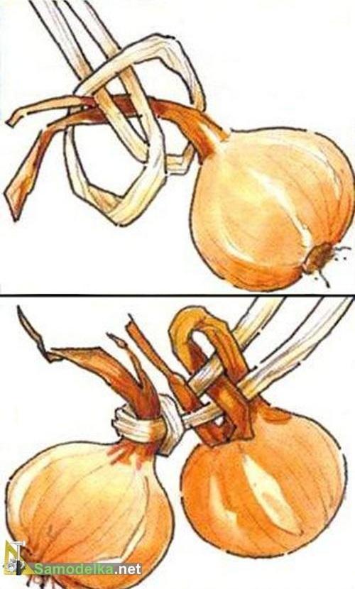 способ плетения косы из лука и чеснока на веревке