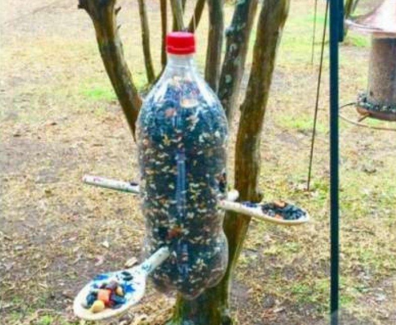 Кормушка из пластиковой бутылки жестко закреплённая на стволе