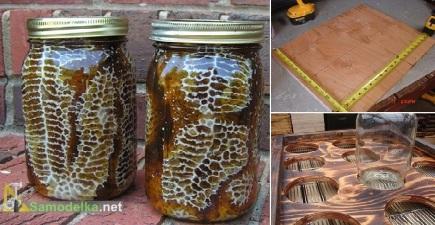 Как пчелы собирают мед в банки
