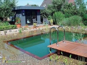 Красивый дачный пруд - бассейн