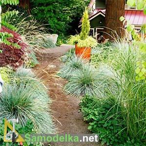 Садовые дорожки своими руками фото 4