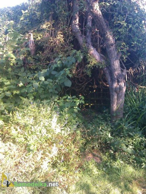 место в саду под домик хоббита