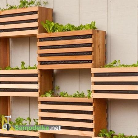 Вертикальный сад в квартире своими руками