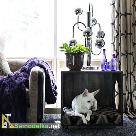 Место для собак готово