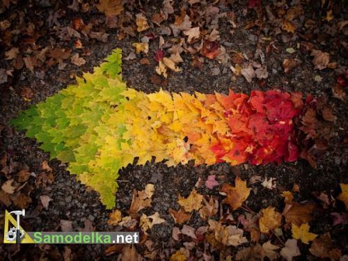 Креативные фигуры из осенних листьев