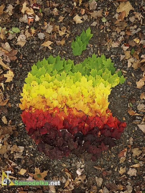 Логотип эпл из листьев
