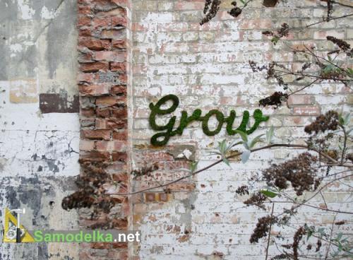 Граффити из мха Анны Гарфорт - выращенные буквы