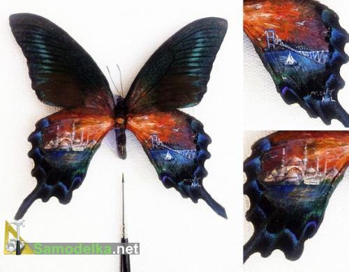 миниатюрная картина на крыльях бабочки