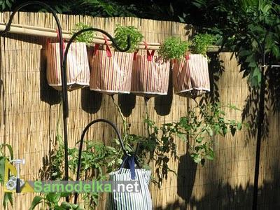 томаты вверх корнями и просто в сумках