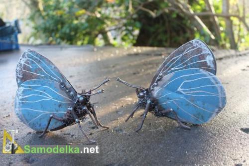Холли - две синие бабочки из металла