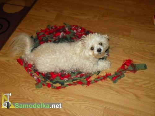 собачка на плетеном самодельном коврике