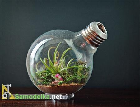Как сделать террариум из лампочки