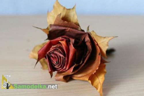 Розы из кленовых листьев пошагово - фото