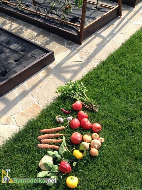 овощи для Бограча